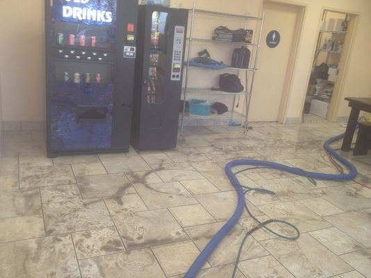 Excellence Janitorial Services & Carpet Cleaning - 19.04.18