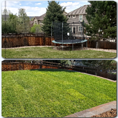Caneywell Landscaping, LLC - 14.06.19