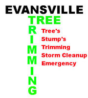Tree Trimming Evansville - 25.10.16