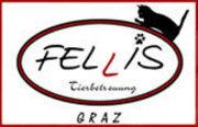 Fellis, mobile Haustierbetreuung, Graz