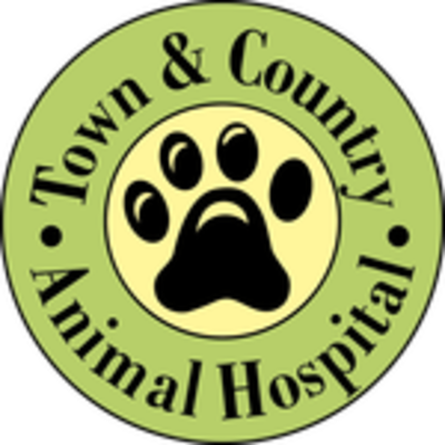 Town and Country Animal Hospital - 02.11.18
