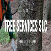 Tree Services SLC - 21.06.20