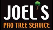 Joels Pro Tree Service of West Carrolton - 16.03.19