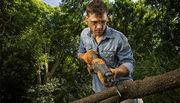 CT Tree & Woodland Services LLC - 21.03.17