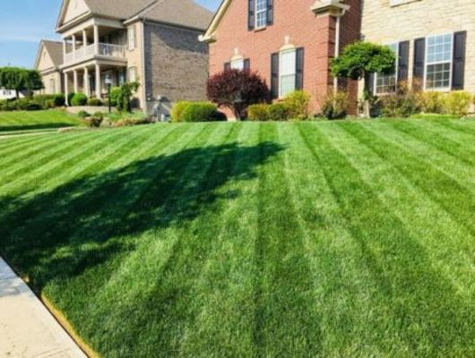 Sloans Lawncare LLC - 14.03.19